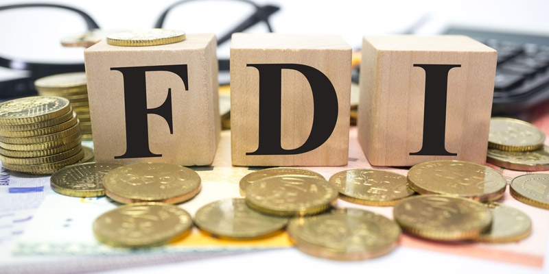 foreign-invested enterprises (FIEs)